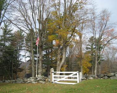 Old Burying Ground trees 2011