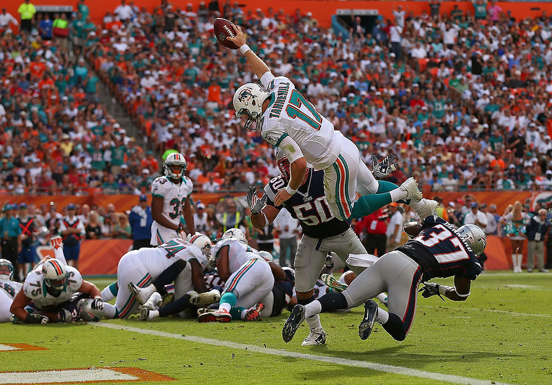 . Ryan Tannehill #17 of the Miami Dolphins dives for a touchdown during a game against the New England Patriots at Sun Life Stadium on December 2, 2012 in Miami Gardens, Florida.  (Photo by Mike Ehrmann/Getty Images)