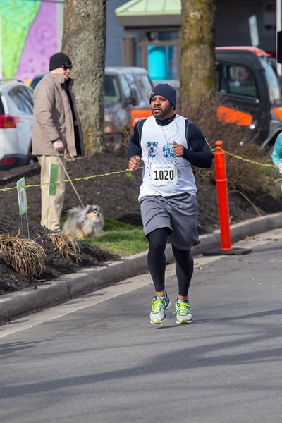 Richmond Spca Dog Jog 2018-317.jpg