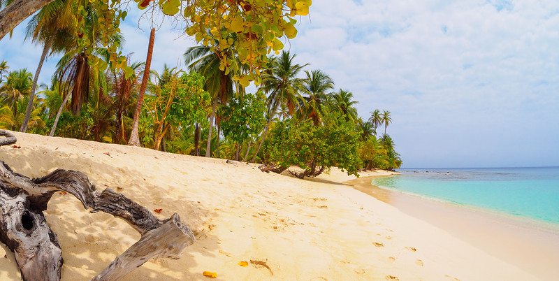 The Dutch Cayes