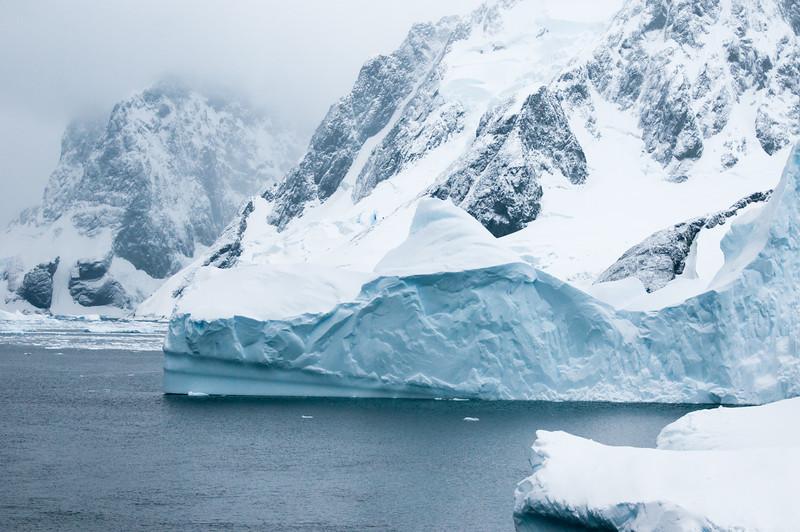 Antarctica 2015 (53 of 99).jpg