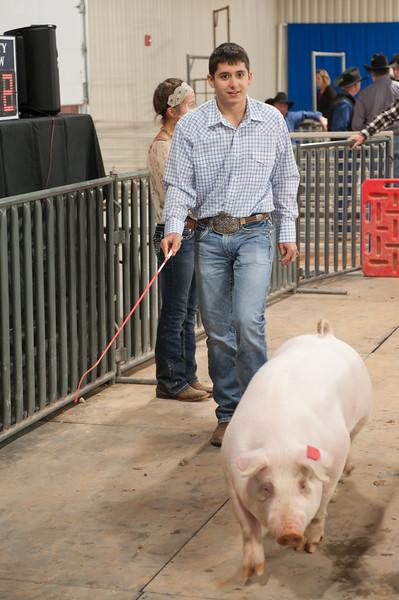 Hays County Show-9843.jpg