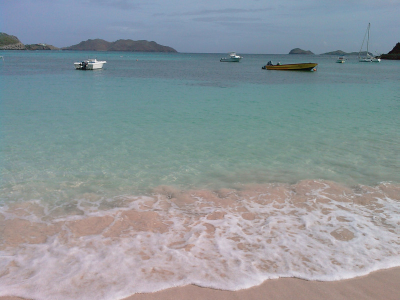 Saint Barth - Saint Jean Bay  So, sun and high temperature are back. Actually, the tropical depression was on the island mostly during the night.  Today we were at the Saint Jean Bay. We've seen there (snorkeling) for the first time a small ray and our first sea-turtle (quite a big one). Marvelous spectacle!