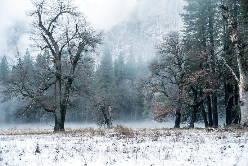 20141213_Yosemite_3028.jpg