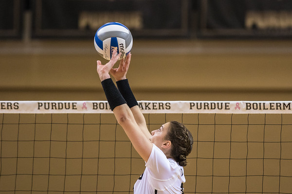 Purdue Volleyball vs Illinois 2015-10-25