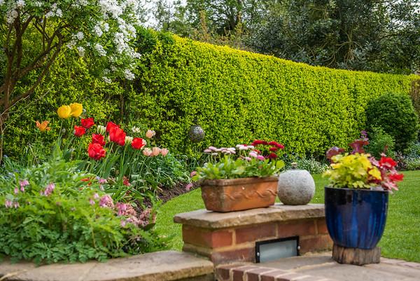 National Garden Scheme - Loxley House