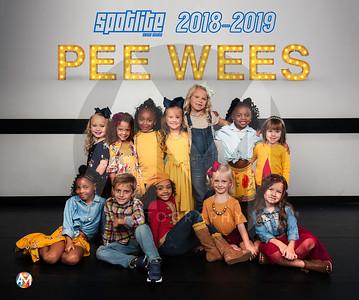 SpotLite Pee Wees 2018