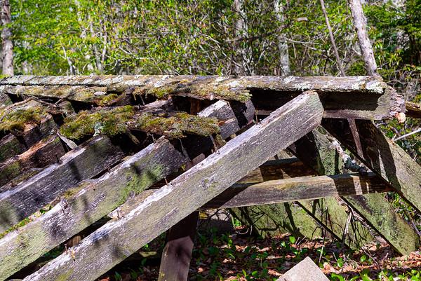 Long Pond Trail, Hopkinton, RI