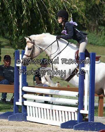 Hunter Ring:  Children's Hunter Pony (Saturday)