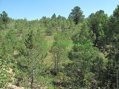 Colorado - August, 2009 - 3