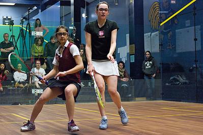 2010-03-06 Gemmell (Harvard) and Mashruwala (Harvard)