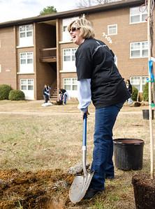 20130208 Tree Charlotte - Little Rock Apartments-37