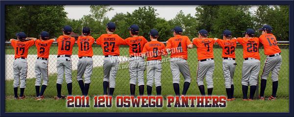 12U White Panther Team Poster