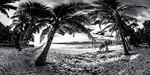 Beachfront Hammok - Vomo - Fiji Islands
