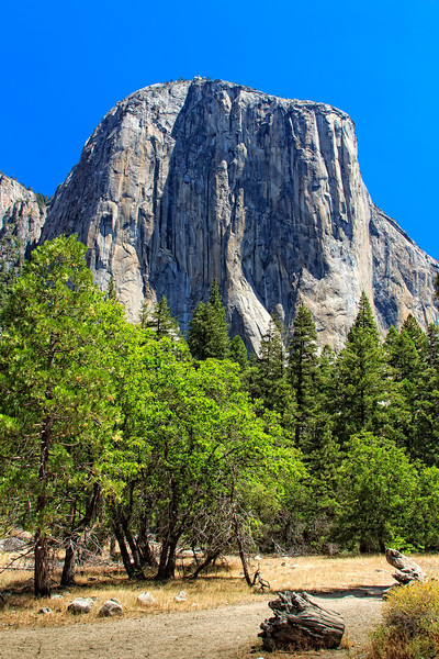 Natual Wonders of Yosemite