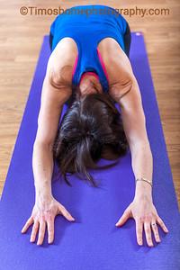 LushTums Yoga