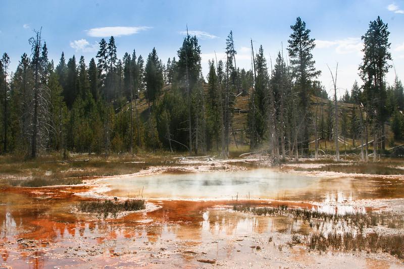 Yellowstone-8619.jpg