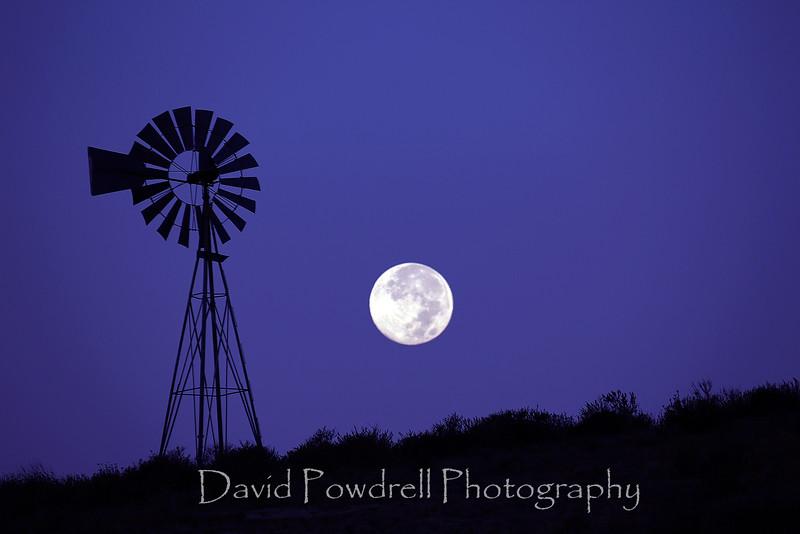 1 Blue Moon before sunrise-purple hue.jpg