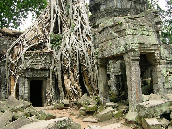 Angkor 2004