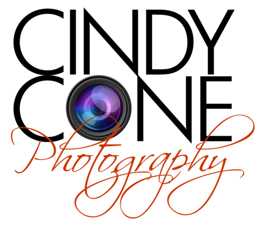 CC-logo_lens-(type-rasterized).png