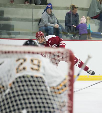 1/4/17: Boys' Varsity Hockey v Brunswick