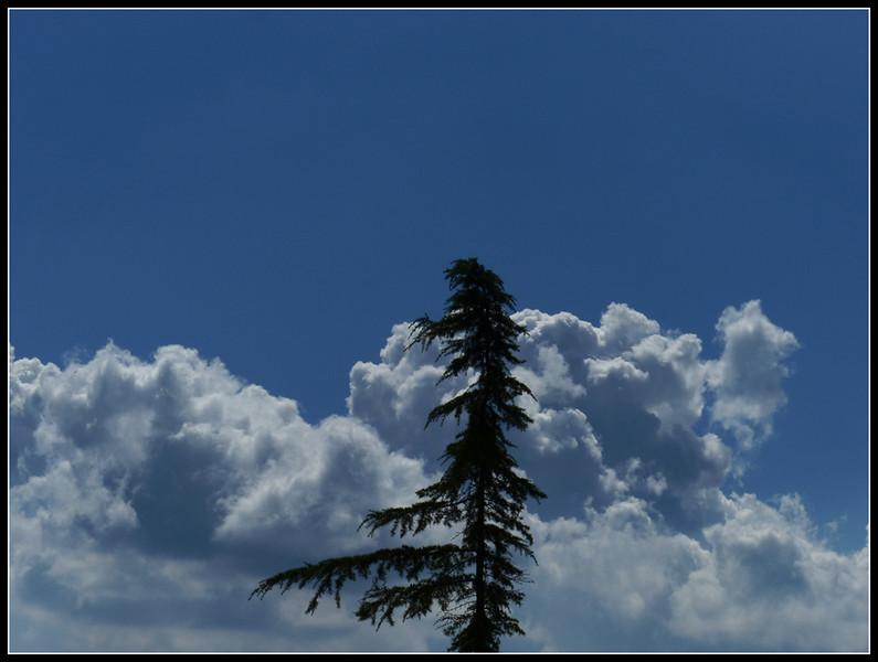 2014-09 Volterra 324.jpg