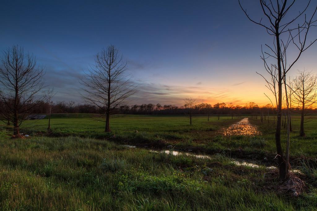 IMAGE: http://alfredomora.smugmug.com/Landscapes/General-Landscapes/i-N8T3CJX/0/XL/20120129-sunset-at-the-park-XL.jpg