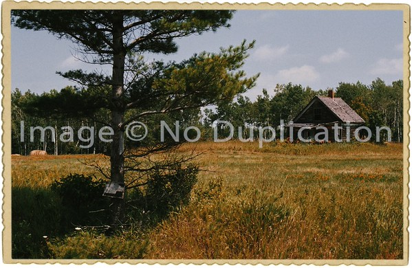 VINTAGED PHOTOS, MI., Bruce Crossing 1985