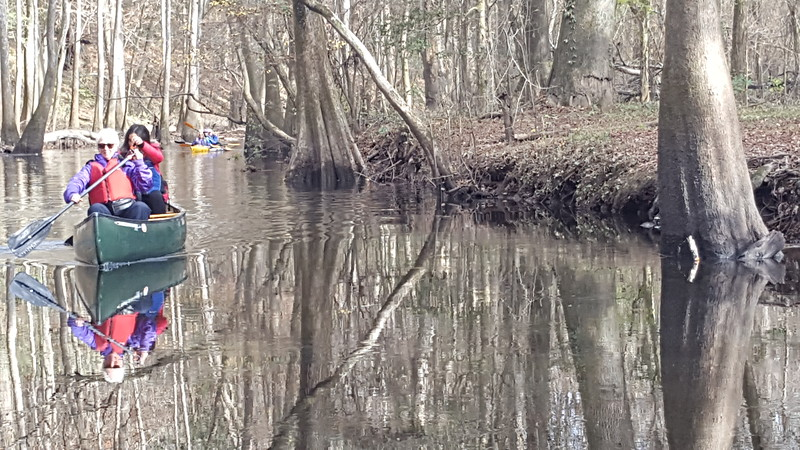 Cedar Creek - Canoeing - 12/11/2016