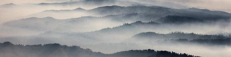 Smoky Wonder