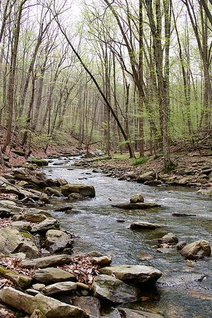 walk along little hunting creek in thurmont april 21, 2017
