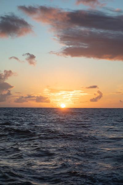 kvb fam holo sunset-115.jpg
