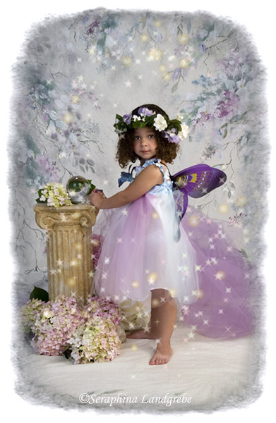 Fairy b.jpg