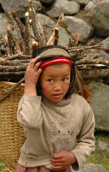 Nepali Girl Collecting Wood - Annapurna Circuit, Nepal