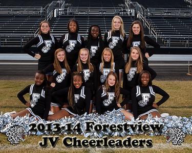 2013-14 Forestview JV