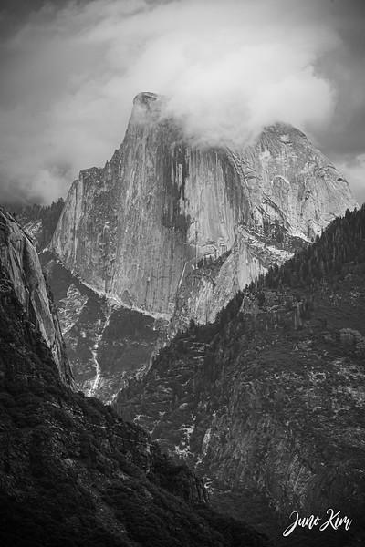 05.2021_Yosemite__DSC7365-Juno Kim-2000.jpg