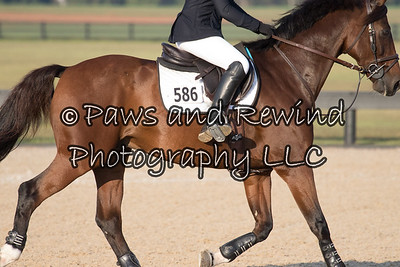 Low Child/Adult Princeton Cup 1.00m