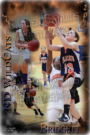 North Davie Wildcat Sports