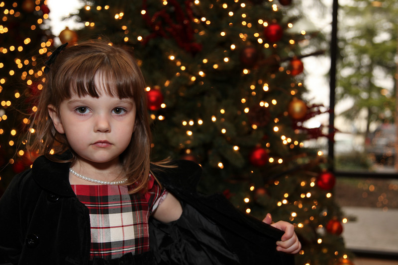 BCA Christmas 09 1190.jpg