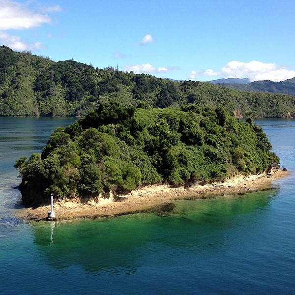 My little island, Queen Charlotte Sound. Today's New Zealand #nofilter special.