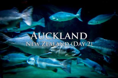 2015-02-06 - Auckland