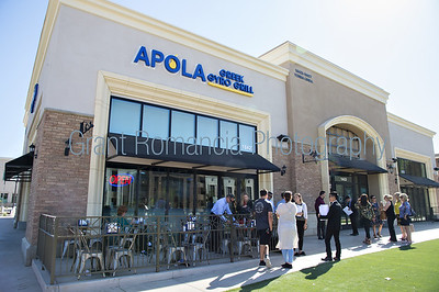Apolo Greek Gyro Grill