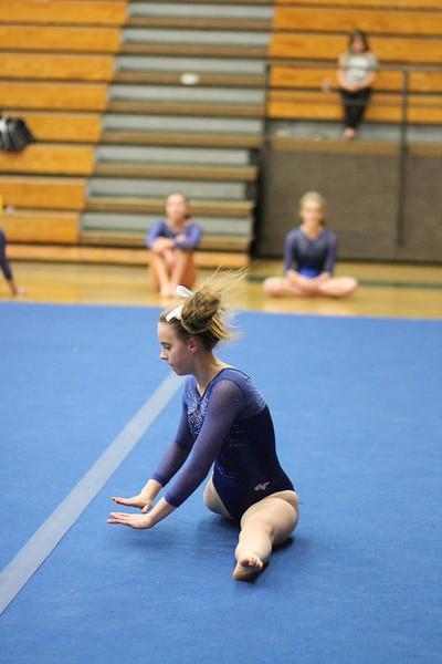 2014_03_27 Gymnastics LCC vs Westview Web 0033.JPG