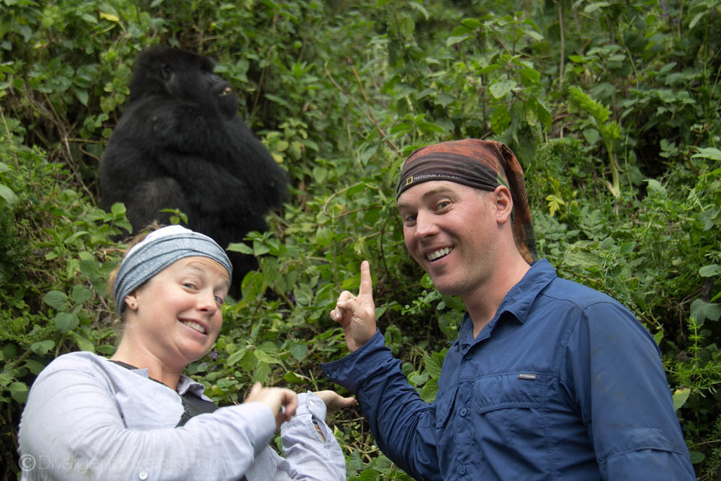 Everything You Need to Know about Gorilla Safaris in Africa