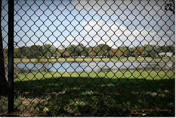 Crest Lake dog Park...201 S Glenwood Ave, Clearwater, FL 33755
