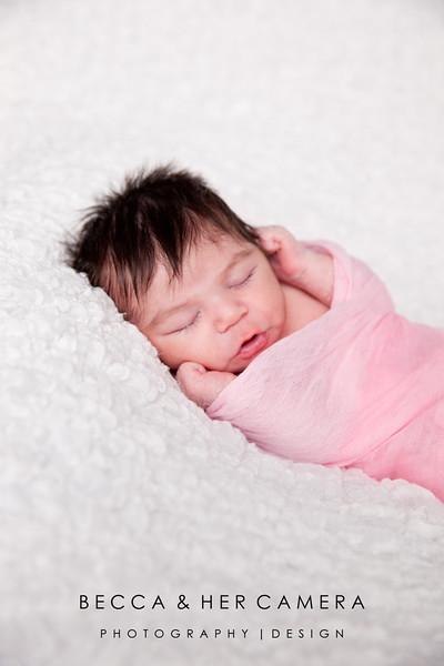 Bella Poole   Newborn