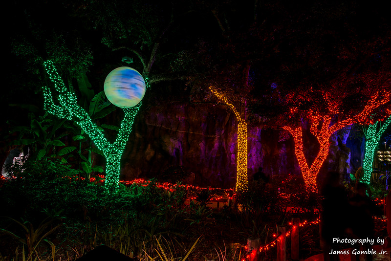 Houston-Zoo-Lights-3095.jpg
