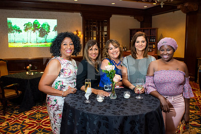 2018 Top 30 Influential Women of Houston VIP Reception