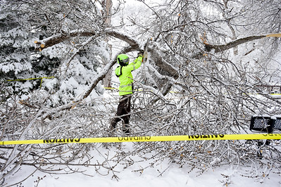 Photos: Spring Snow Storm in Longmont