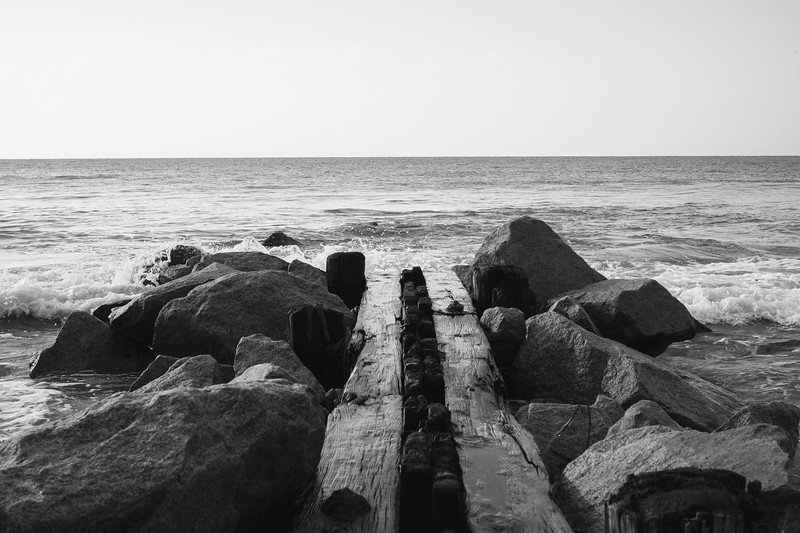 Wood and Waves